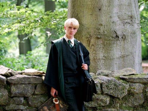 Малфой из Гарри Поттера 12